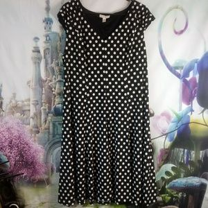 🍁- Dressbarn black and white polkadoted dress